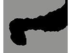 logo Hôtel les bains de Cabourg****
